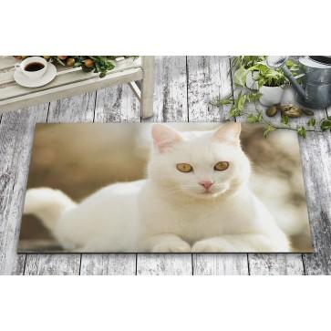 Kızgın Beyaz Kedi Kapı Önü ve Ev İçi Paspas 45x75 cm